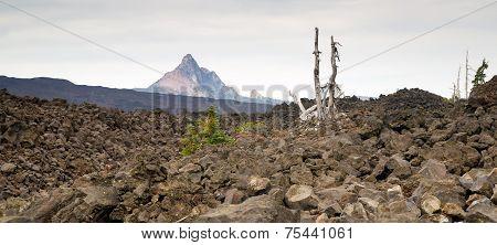 Mckenzie Pass Mt Washington Cascade Range Ancient Lava Field