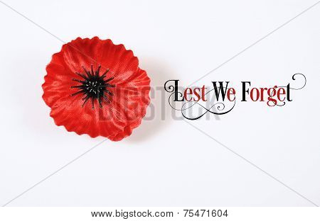 Lest We Forget, Red Flanders Poppy Lapel Pin Badge For November 11, Remembrance Day Appeal. On White