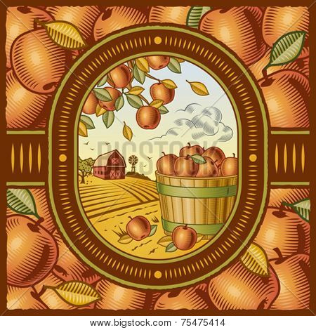 Apple harvest. Vector