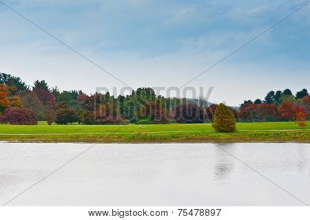 Group Of Colorful Autumn Trees Standing On A Meadow By Lake.