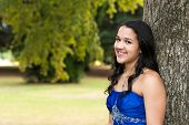 stock photo of quinceanera  - Teen girl wearing her formal Quinceanera dress - JPG