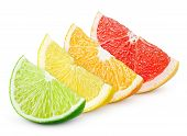 pic of orange  - Sliced colorful citrus fruit  - JPG