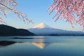 image of mount fuji  - Mount Fuji with Cherry Blossom view from Lake Kawaguchiko Japan - JPG