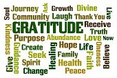 picture of gratitude  - Gratitude word cloud on white background - JPG