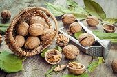 stock photo of nutcracker  - Walnuts nutcracker and basket on old rustic table - JPG