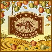 foto of barn house  - Apple Orchard - JPG