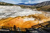 image of mammoth  - Mammoth Hot Spring - JPG