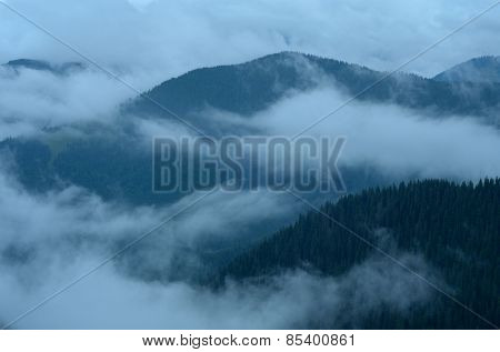 Beautiful fog in the mountains. Cloudy weather. Coniferous forest on the slopes