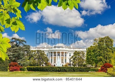 The White House at summer, Washington DC