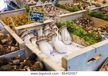 Fresh mushroom varieties in French market in Paris, France