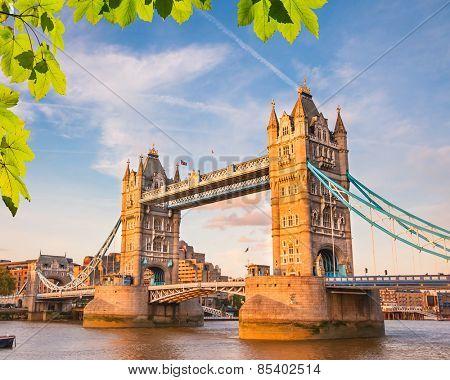 Tower bridge at summer, London