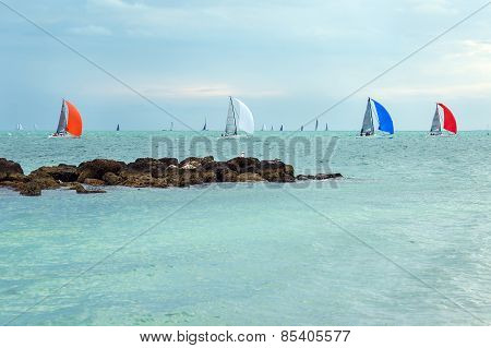 Colorful sailing boats on the sea