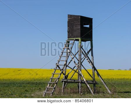 Hunting watchtower in summer