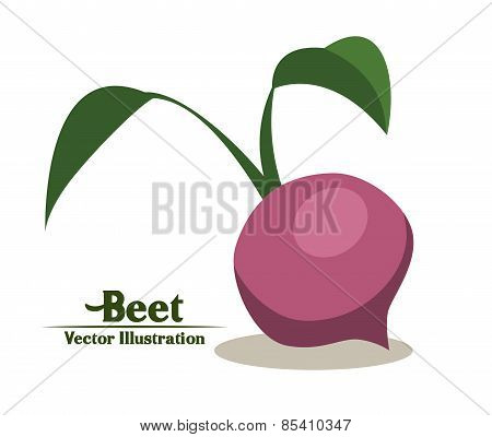 Groceries design over white background vector illustration