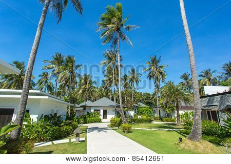 Beautiful tropical resort bungalows under the palm trees