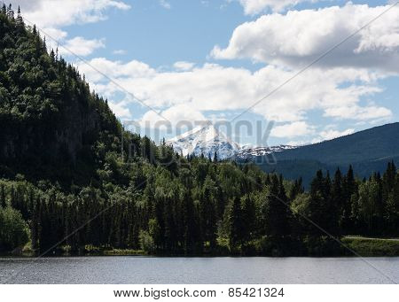 Chitina Landscape