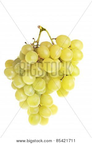Fresh And Tasty Green Grapes