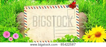 Summer background with old post card, wooden fence and green grass