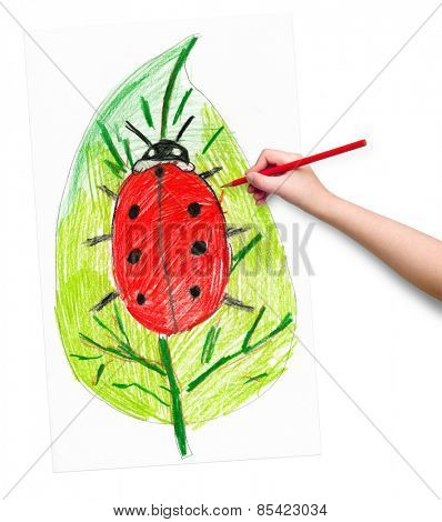 ladybug on leaf. child drawing.