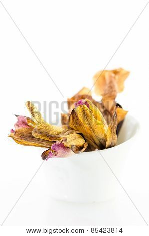 Dried Orchid Flowers In White Bowl