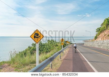Beautiful Of Bicycle Lane Along The Sea