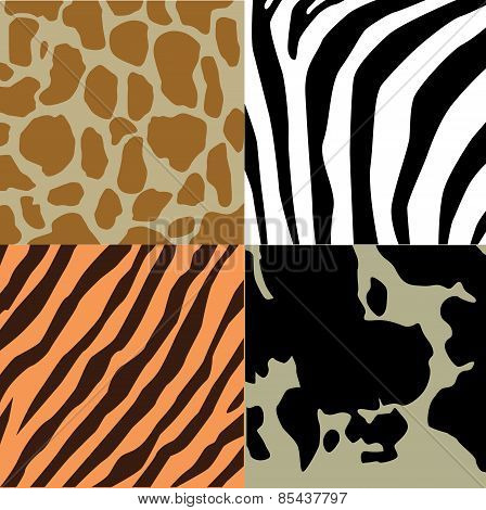 Animal pattern tiger zebra cow giraffe