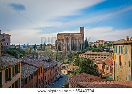 Looking at the Basilica