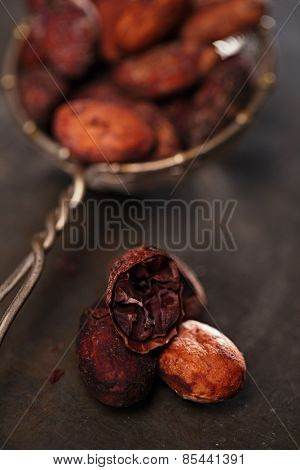 roasted cocoa chocolate beans on tin background