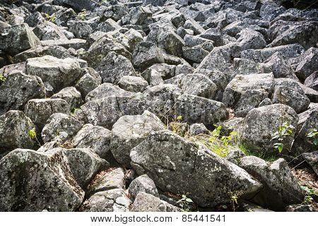 Andesite Stone Sea In Slovakia