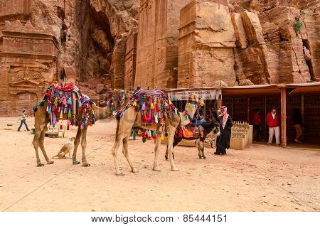Jordan, Petra. Souvenir Trade, Camel Riding