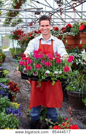 Gardening people. Florist working with flowers in greenhouse.