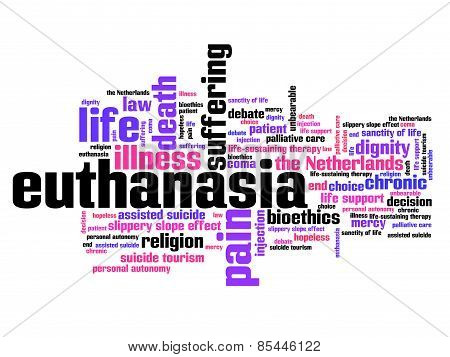 a description of euthanasia on life sanctity of put me out of my misery