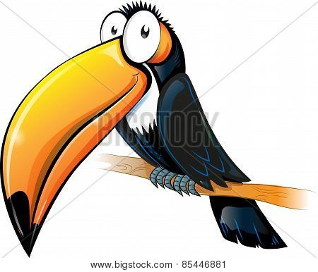 Fun Toucan Cartoon Isolated On White.
