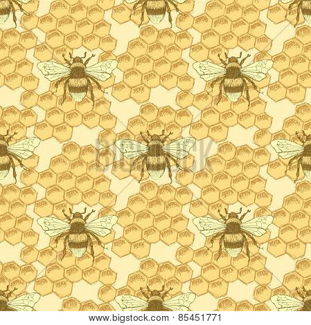 Sketch Bee And Honey Cells In Vintage Style