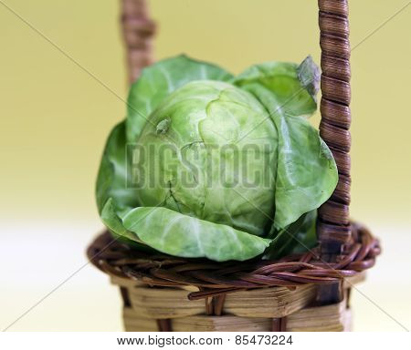 Brussels sprout .