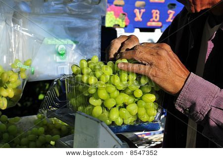 Packing Grapes