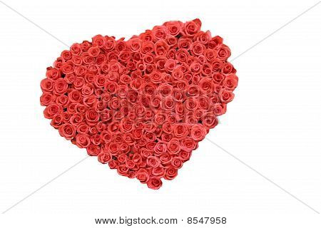 roses in heart shape isolated on white