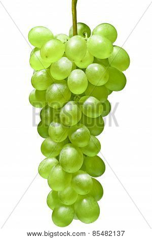 Ripe Green Grapes. Isolated On White Background, Food Close-up