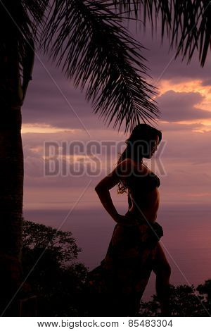 Silhouette Of Woman In Bikini And Sarong Side Knee Out