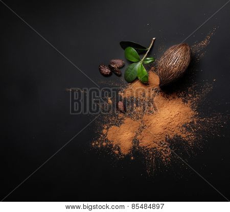 Cacao beans and powder on black background