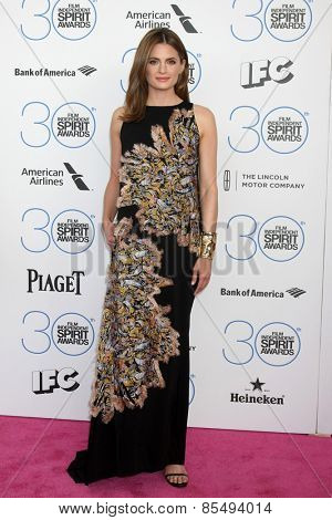 LOS ANGELES - FEB 21:  Stana Katic at the 30th Film Independent Spirit Awards at a tent on the beach on February 21, 2015 in Santa Monica, CA
