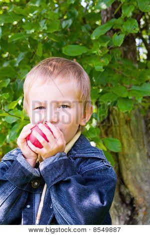 Niño feliz comer manzana al aire libre