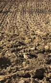 picture of plow  - Cultivated land - JPG