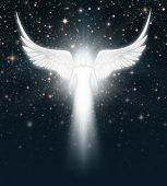 foto of cherubim  - Digital illustration of an angel in the night sky full of stars - JPG