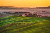 picture of senesi  - Tuscany rolling hills on sunset - JPG