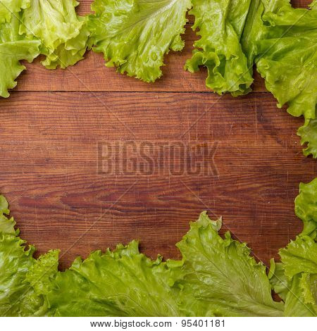 Cos lettuce isolated on wood board.