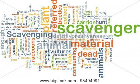 Background concept wordcloud illustration of scavenger