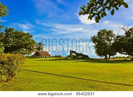 Canopy and tree at tropical beach - travel background