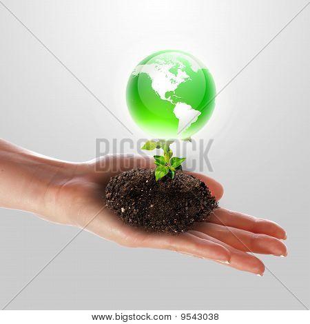 Hand And Earth