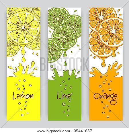 Citrus fruit banners